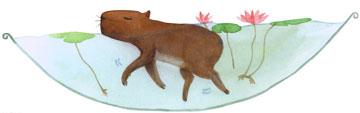 小花狗学游泳