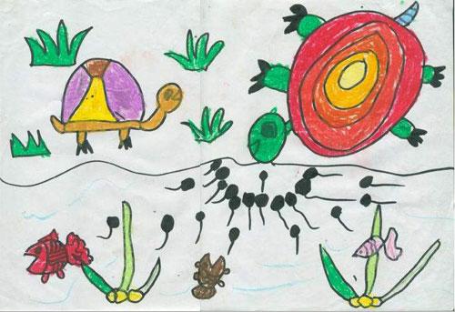 幼儿画可爱的乌龟
