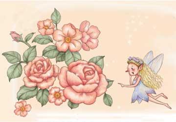 蔷薇故事书