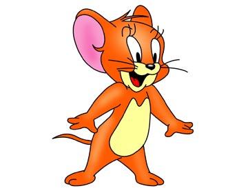 宠物小老鼠