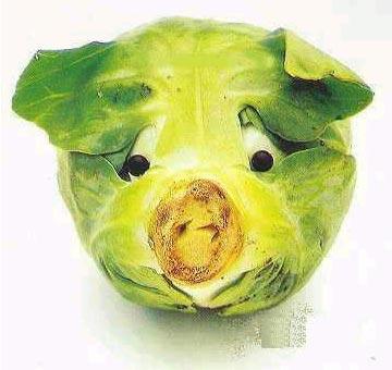 易拉小猪头